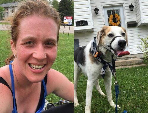 How to safely run with your dog in the summer heat