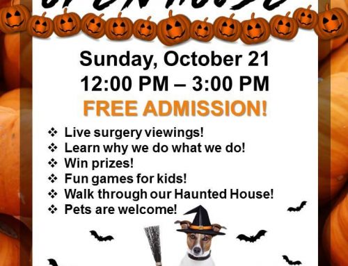 Save the Date: PAH Halloween Open House is October 21