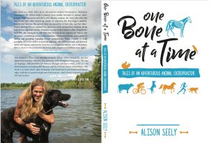 One Bone at a Time by Dr. Alison Seely